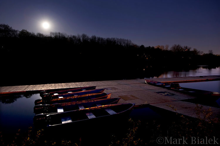 Bandemer Park Under Moonlight